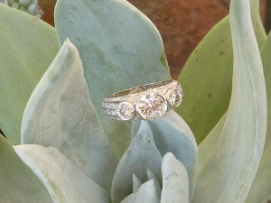 Succulent plant displaying a wedding ring by Calla Gold
