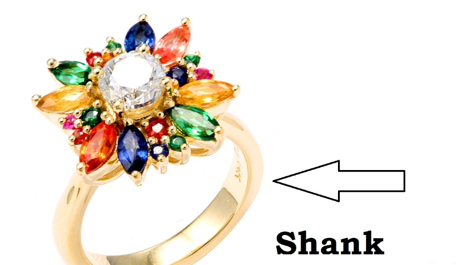 Ring showing where the shank is